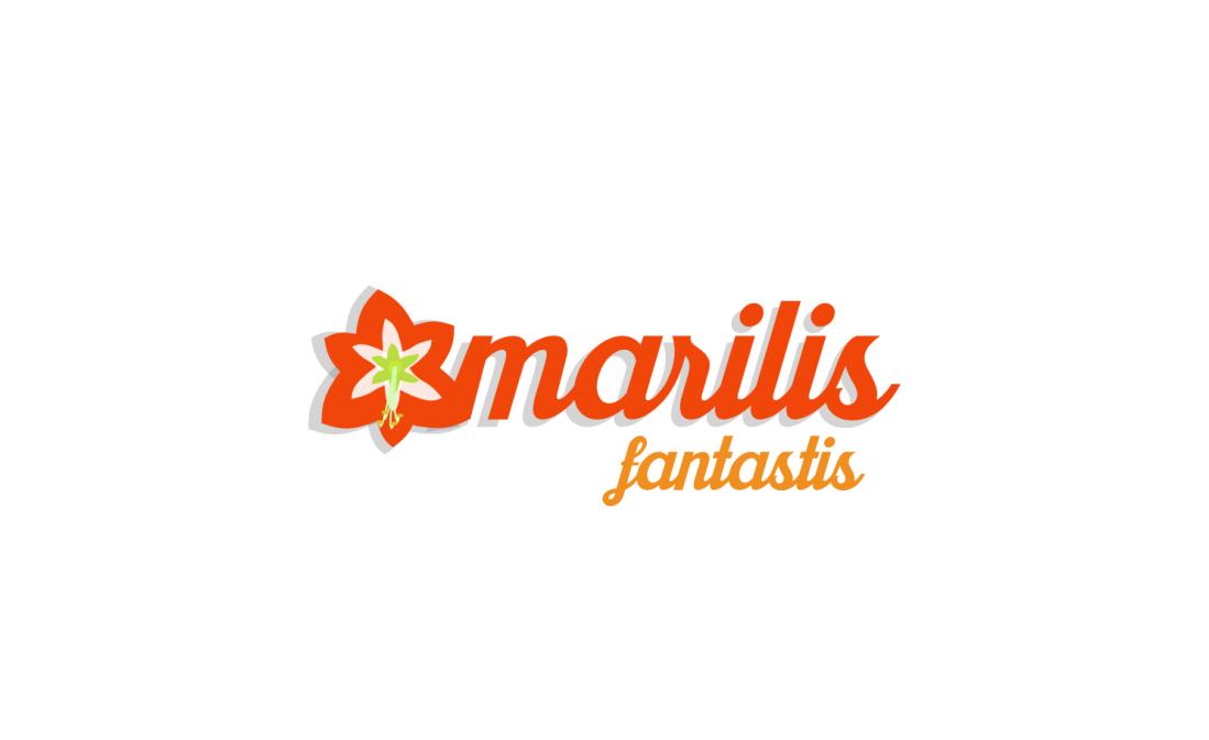 amarilis fantastis